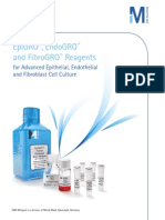 EpiGRO™, EndoGRO™ & FibroGRO™ Reagents for Advanced Epithelial, Endothelial and Fibroblast Cell Culture