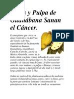 Hojas y pulpa de Guanábana Sanan el Cancer