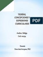 Teorías, expresiones y enfoques curriculares