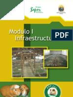 MODULO 1 Infraestructura Para Cuyes