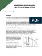 Relatorio 3 - Separação e identificação dos componentes de uma mistura binária de líquidos voláteis