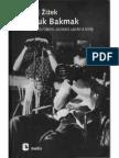 Zizek_-_Yamuk_Bakmak