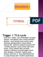 TCA cycle