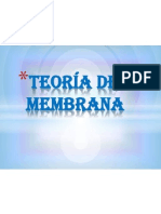 Teoría de membrana