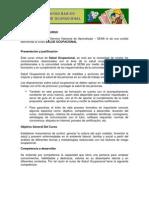 INFORMACIÓN DEL CURSO SALUD OCUPACIONAL
