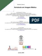Modelos Deformaveis Em Imagem Medica