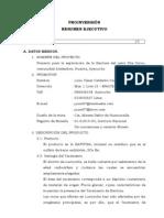 PROYECTOSVARIOS (39)