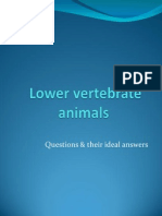 Lower Vertebrate Animals. Questions & their Ideal Answers