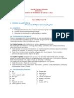 Biologia I - 7 - Tejidos