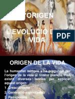 Origen i evolució