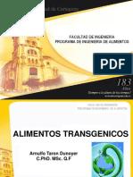 alimnetos transgenicos