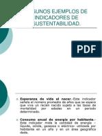 Indicadores de Sustentabilidad_Ejemplos