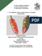 Cultivo Chile Tabasco
