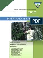 Inventario de carbono_dendroenergía_práctica