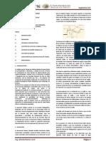 Resumen Ejecutivo - Bocatoma Tirolesa