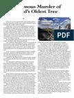 Case study of bipolar disorder scribd