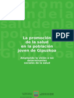 PromociónSalud Gipuzkoa_Resumen