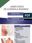 EXAMEN FISICO Glandula Mamaria