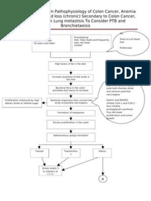 Diagram Of Pathophysiology Cancer Colorectal Cancer Large Intestine