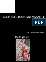 Surprises Du Monde Vivant III