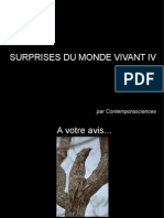 Surprises Du Monde Vivant IV