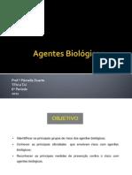 Aula 2 - Agentes Biológicos
