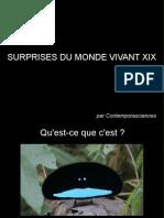 Surprises Du Monde Vivant XIX
