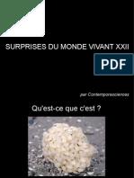 Surprises Du Monde Vivant XXII