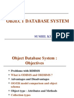 Object Database system