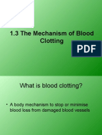 1.3 the Mechanism of Blood Clotting