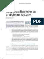 Conductas Disruptivas en SD