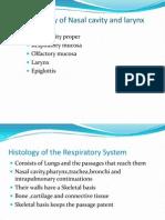 Histology of Naval Cavity
