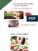 6 Producción de semillas