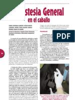 Anestesia Caballos
