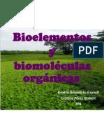 biomolculas-091016023833-phpapp02