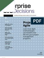 EntCIO Decisions Agile v5