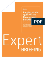 Expert Briefing_Hopping on the Agile Project Management Bandwagon_final