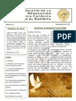 Boletín_29