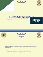 3 Algebra Vectorial