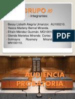 Diapositivas audiencia probatoria