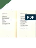 Manuel Forcano_poemes