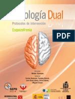 Programa Formativo Patología Dual. Esquizofrenia