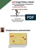 IVMS-Gross Pathology, Histopathology, Microbiology and Radiography High Yield Image Plates