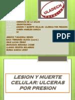 Lesion y Muerte Celular