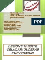 Exposicion de Patologia Ulceras Por Presion i Unidad