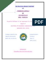 Ajay Edited Report Pankaj