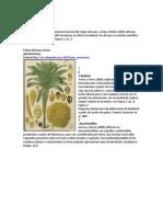 Modelo Proyecto Biodieses