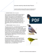 Facts on the bird species most commonly observed at the Preserve - Santa Cruz County, California