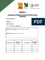 Anexo3-Plantilla Para Presentar Una Idea de Negocio