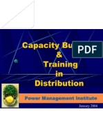 Pmi Capacity Building